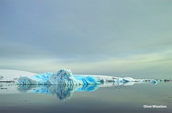 OWheeldon-Antartica-II-B