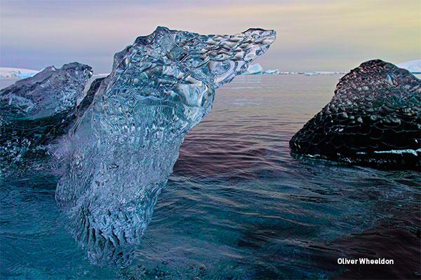 OWheeldon-Antartica-II-D