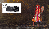 Autumn Fairies with SIGMA Foveon Camera Systems by Paul Monaghan