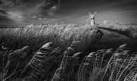APOY 2015 Winner; Lee Acaster