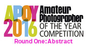 APOY2016 ROUND ONE: Abstract, Results