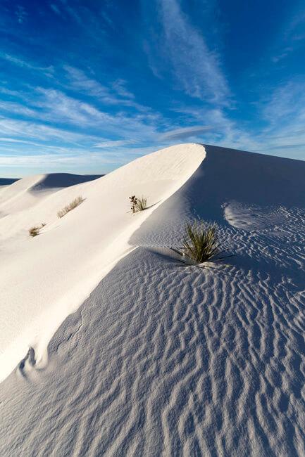 along-the-ridge-white-sands-sigma-12-24-f4-art