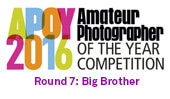 APOY2016 ROUND SEVEN: Big Brother, results