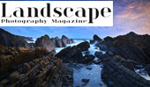 Seascape Techniques by Lea Tippett