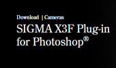 "The Plug-in for the digital image editing and post-production software Adobe® Photoshop® CC from Adobe Systems Co., Ltd., ""SIGMA X3F Plug-in for Photoshop®"" is now available for download."