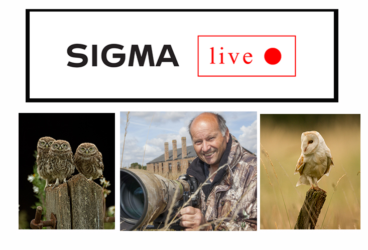 Sigma-live-russell-savory